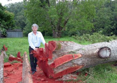 Robert Howard with Timber